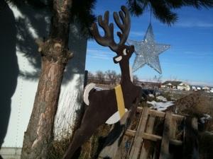 Reindeer and Star
