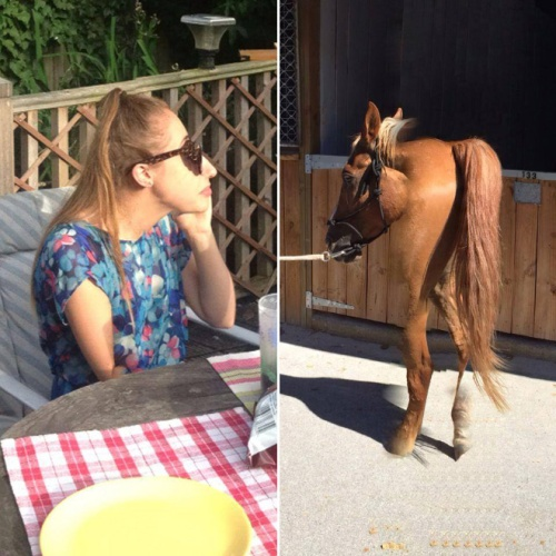 geezer horse